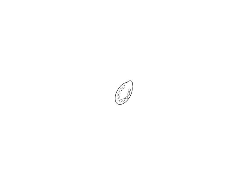Medela Membránka bílá