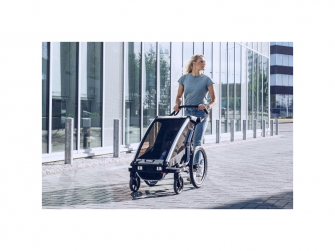 Thule Chariot Lite1 Agave 2