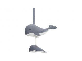 Hrající velryba ocean blue