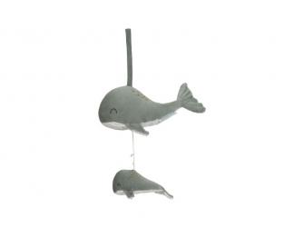 Hrající velryba ocean mint