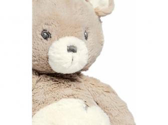 Medvěd Tally 2
