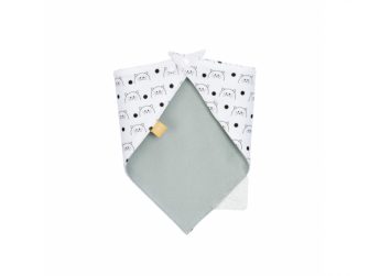 Interlock Bandana with silicone teether Little Chums cat 3