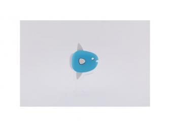 MOLA - magnetická skládací hračka s 3D modelem oceánu 4