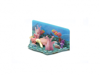 ŽELVA - magnetická skládací hračka s 3D modelem oceánu 7
