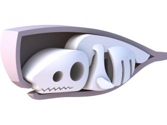 VORVAŇ - magnetická skládací hračka s 3D modelem oceánu 2